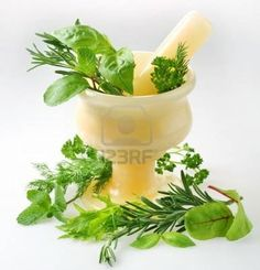 Neem and Tulsi make your skin spotless. Both herbs are best for pimple treatment Herbal Magic, Benefits Of Basil, Tulsi Plant, Green Witchcraft, Cosmetics Ingredients, Best Fragrances, Spices And Herbs