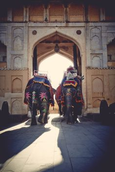 Wanderlust: India | Free People Blog #freepeople