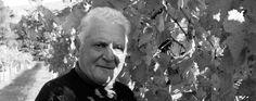 Il Cancelliere - O' Cancelliere è il soprannome con cui veniva chiamato il nonno di Soccorso Romano che era solito dispensare pareri legali ai contadini. Soccorso fonda l'azienda nel 2005 su impulso della figlia Nadia e del genero Claudio, aderendo al progetto enoculturale dell'enologo Antonio De Gruttola ...