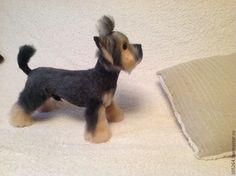 Купить Йоркширский терьер (стриженый) - йорк, Йоркширский терьер, собачка, собака, щенок