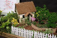 Miniature garden cottage for those garden fairies. Mini Fairy Garden, Fairy Garden Houses, Dream Garden, Garden Cottage, Miniature Plants, Miniature Fairy Gardens, Miniature Houses, Garden Terrarium, Garden Pots