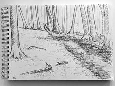 Pencil and Bic Biro Woodlan Sketch