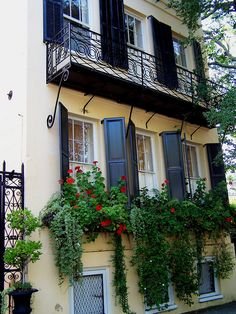 window boxes and balconies like in this photo are found all over Charleston! Window Box Flowers, Window Boxes, Flower Boxes, Charleston Homes, Garden Windows, Colorful Roses, Garden Gates, Windows And Doors, Beautiful Gardens