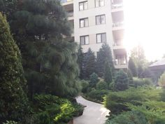 Rooms For Rent, River, Park, Building, Outdoor, Beautiful, Outdoors, Buildings, Parks