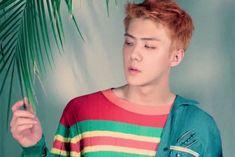 sehun exo the war - koko bop photo shoot teaser Baekhyun Chanyeol, Exo Kai, Exo Comeback 2017, Teaser, Rapper, Sehun Cute, Ko Ko Bop, Exo Album, Hunhan