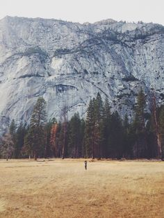 This is a reminder of how small I am. (Although this isn't a picture of me.) Yosemite Valley. January 10, 2014