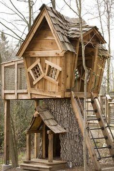 pallet forts for kids | De boom in! – Een boomhut bouwen, enkele tips