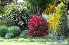 Garden design:Side of Drive - Spring