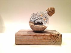 "Beach terrarium-Under the sea ""terrarium"" Sea fan in lightbulb on piece of…"