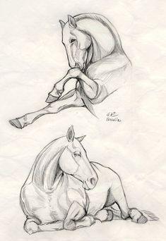 Horses by Eszti [©2010]