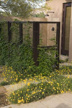 A freestanding L-shaped screen that doubles as a trellis for climbing vines. The wire mesh panels are fabricated with industrial screening, available in a wide array of gauges. Metal posts hold the panels, and everything has been allowed to weather naturally.