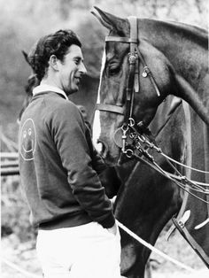 polo horses of the royal family - Google Search