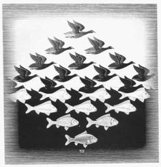 My 1st Escher experience. I made curtains with them