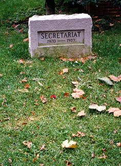 Secretariat (1970 - 1989) One of the greatest racehorses of all time, won the Triple Crown in 1973, winning the third leg, the Belmont Stakes, by 31 lengths