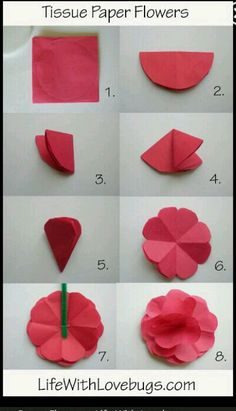 tissue paper flowers x