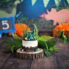 Dino Smash Cake, Dino Cake Smash, smash cake, cake smash Dino Cake, Dinosaur Cake, Dinosaur Party, Cake Smash Photography, Portrait Photography, 1st Birthdays, Birthday Parties, Party Ideas, Cakes