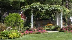 Gazebo vs. Arbor vs. Trellis: Which is Best for My Backyard?
