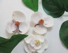 Seashell Flowers Colorful Couquina Shell Flowers by CraftyShells