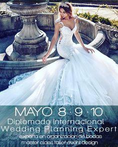 """ATENCION WEDDING PLANNERS!  QUIERES INICIARTE COMO WEDDING PLANNER? QUIERES CAPACITARTE PARA HACER CRECER TU NEGOCIO?  Por primera vez en La Paz un diplomado de primer nivel muy completo para las profesionales en el rubro de eventos!  DIPLOMADO INTENSIVO CERTIFICACIÓN INTERNACIONAL  BRIDAL WEEK LA PAZ BOLIVIA 2017 Wedding Planning Expert""""  8 y 9 de mayo 2017 Master Class Workshop Event Designer 10 de Mayo de 2017  LUGAR: HOTEL STANNUM  Salón Argentum A pedido del público regresa una…"""