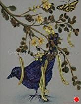 """Glossy Cowbird w: Zebra Butterfly"" by Celesa Lucien Oil ~ 8.5"" x 5.5"""
