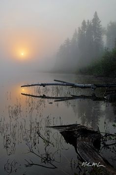 Foggy September morning (Ontario) by Mark McCulloch