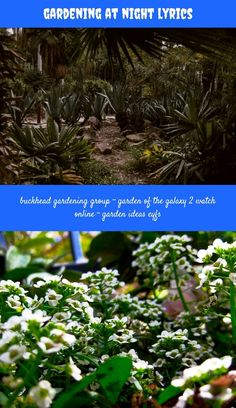 #gardening At Night Lyrics_57_20180711084032_23 Linen Dresses, Garden Ideas  Eyfs Teacher, Best Documentary 2018