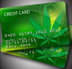 Banks, Buds, And Safety: Eric Holder Announces America's Banks Will Cultivate Marijuana Banking Services