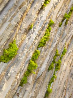 @Marmomacc Meets Design - #Design Approaches on ShowThe - Colours of Green: Sustainable #Stone