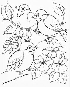 64 Trendy Ideas embroidery designs for kids coloring sheets Bird Coloring Pages, Adult Coloring Pages, Coloring Sheets, Coloring Books, Kids Coloring, Bird Drawings, Animal Drawings, Easy Drawings, Vogel Illustration