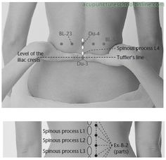 Ex-B-7-Lumbar-Eyes-YAOYAN-Acupuncture-Points-2.jpg (398×384)
