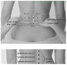 Ex-B-7-Lumbar-Eyes-YAOYAN-Acupuncture-Points-2.jpg 398×384 pixels