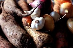 roots, via pretty gingham