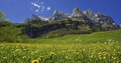What a view! Take a walk and enjoy the landscape of these Swiss mountains @ Leukerbad. #Summer