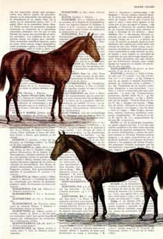 Horses Dictionary Book Print - Altered art on upcycled book pages.