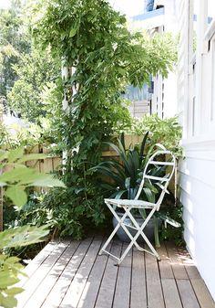 Lucy Feagins and Gordon Johnson - The Design Files Porch Garden, Balcony Garden, Home And Garden, Lush Garden, Back Gardens, Outdoor Gardens, Outdoor Rooms, Outdoor Living, Melbourne House