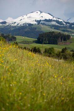 Appenzellerland. (Bild: Monika Schmid)