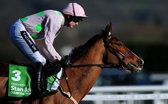 Faugheen ridden by Ruby Walsh race during The Stan James Champion Hurdle Challenge Trophy during Day One of the Cheltenham Festival at Cheltenham Racecourse on March 10, 2015 in Cheltenham, England