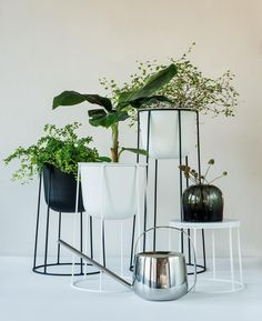 Bilderesultat for pidestall plante Indoor Plants, Planter Pots, Candle Holders, Candles, Vase, House Styles, Furniture, Instagram, Design