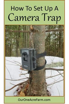 8ffe4df8171 Camera traps can help you identify lurking predators, plan hunting  expeditions, learn about wildlife