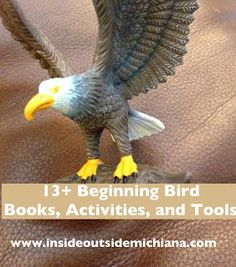 Inside Outside Michiana: Beginning Bird Books, Activities, and Tools for Ki...