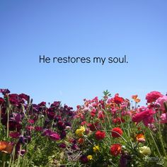 """He does restore souls. """"He restores my soul. He leads me in paths of righteousness for his name's sake."""" Psalm 23:3"""