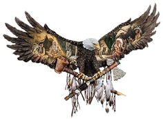 drawings of american bald eagles | WALL ART - NATIVE AMERICAN - BALD EAGLE contents