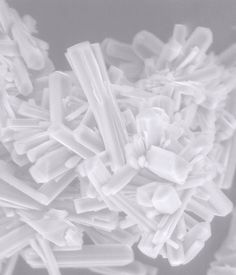 FEI Company | Mg Carbonate crystals