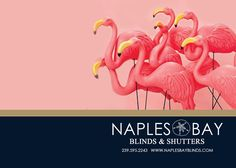 Naples Bay Blinds +