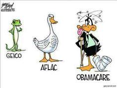 Poor Daffy!