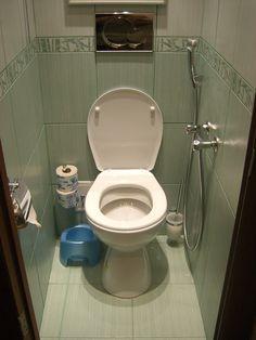 39d0e1e91c2e06b02a8a9391b18674c1--toilet