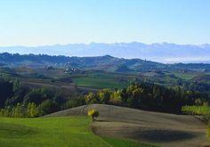 Monforte, Paesaggi di Langa #langhe #hills #provinciadicuneo #piemonte #italy