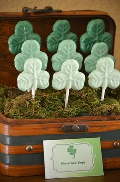 Green ombre chocolate lollipops
