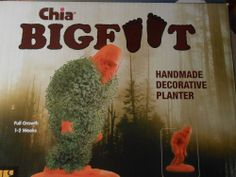 Bigfoot Chia Pet - Heads Up.Everyone I know is getting one of these for Christmas this year. Bigfoot Photos, Finding Bigfoot, Chia Pet, Bigfoot Sasquatch, Decorative Planters, Handmade Decorations, Gentle Giant, Random Stuff, Gifts
