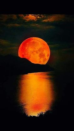 Beautiful Moon, Beautiful Images, Orange Moon, Shoot The Moon, Moon Magic, Moon Pictures, Moon Photography, Sunset Wallpaper, Foto Art